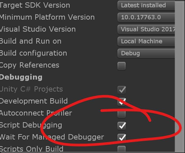 managed debugger